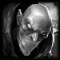 파일:singed_portrait.png