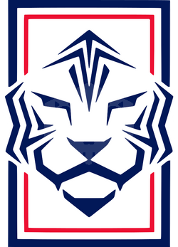 파일:Korea Republic KFA 2020.png