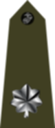 파일:external/upload.wikimedia.org/80px-US_Marine_O5_shoulderboard_vertical.svg.png