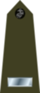 파일:external/upload.wikimedia.org/80px-US_Marine_O2_shoulderboard_vertical.svg.png