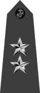 파일:external/upload.wikimedia.org/80px-US_Marine_O8_shoulderboard_vertical.svg.png