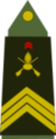 파일:external/upload.wikimedia.org/80px-Army-FRA-OR-06.svg.png