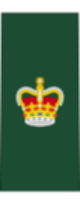 파일:external/upload.wikimedia.org/80px-Canadian_Army_OR-7.svg.png