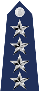 파일:external/upload.wikimedia.org/80px-US_Air_Force_O10_shoulderboard.svg.png