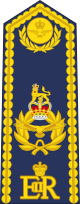 파일:external/upload.wikimedia.org/80px-British_RAF_Air_Officer_%28ceremonial_shoulder_board%29.svg.png