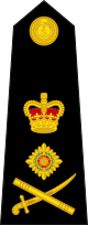 파일:external/upload.wikimedia.org/80px-British_Royal_Marines_OF-9.svg.png