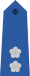 파일:Taiwan-airforce-OF-4.svg.png