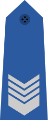 파일:Taiwan-airforce-OR-6.svg.png